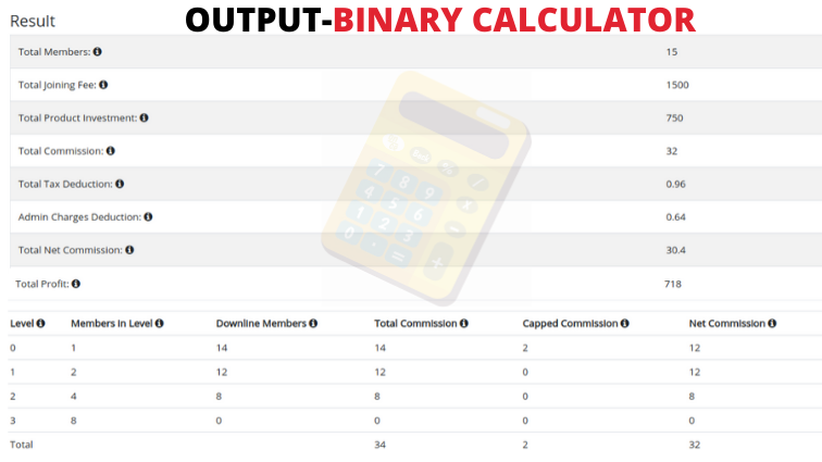Binary MLM Calculator output